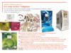 LGR Packaging - Avril 2018 - Tendances packaging vin 2018